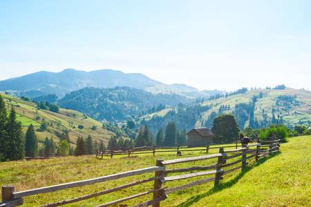 Rural landscape in Carpathian Mountains in the summer morning (near Verkhovyna), Ukraine.