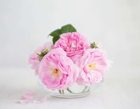 Bouquet of  pale pink Roses against  of light grey wooden background.  Tea Roses.  Shallow depth of field. Selective focus.