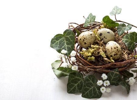 Quail eggs in nest on the white  wooden table.  Easter decor