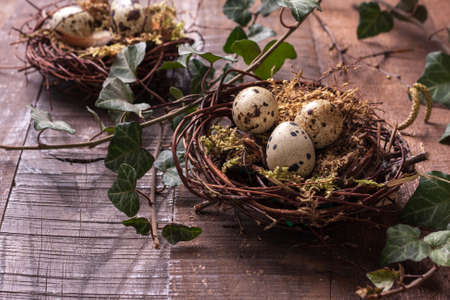 Quail eggs in nests on the rustic wooden table.  Easter decor