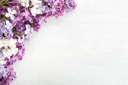 Spring background.  Different   tiny flowers of Lilac on the  white wooden shabby background. Floral border. Flat lay.