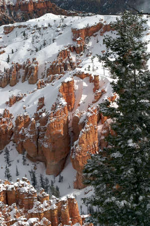 Bryce Canyon after snow storm. photo