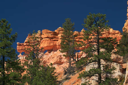 Rock-formation in Bryce Canyon National Park. photo