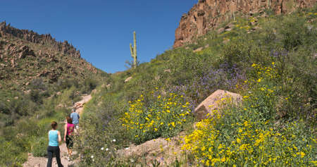 superstition: Hikers on Peralta Trail in Superstition Wilderness. Stock Photo