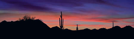 Saguaro silhouette against red sunset lit clouds in Sonoran Desert.