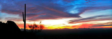 sonoran desert: Saguaro silhouette in red sunset lit clouds. Stock Photo