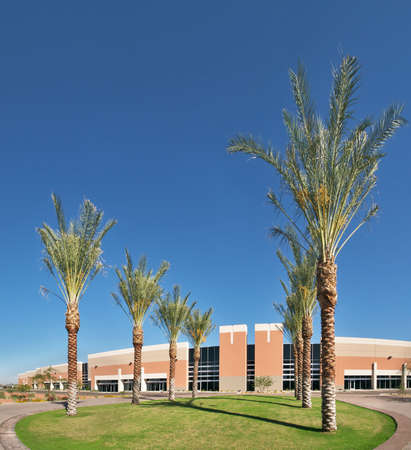 generic location: Entrance plaza with palms, into corporate headquarters. Stock Photo