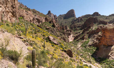superstition: Siphon Draw Trail in Superstition Mountains.