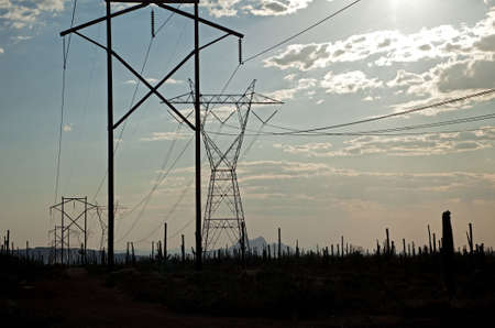 Power lines and Saguaro silhouetten. photo