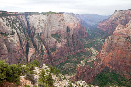 Zion Canyon view off Observation Point Trail.