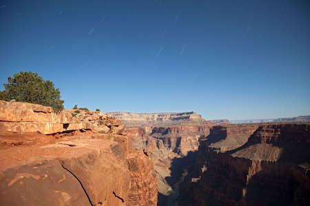 toroweap: Startrails over Moon lit Grand Canyon.