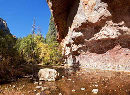 sedona: Autumn in West Fork Oak Creek, near Sedona.