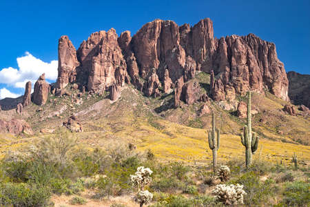 Superstition Mountains in blooming Sonoran Desert  写真素材
