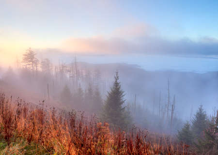 newfound gap: Autumn sunrise from Clingmans Dome, Great Smoky Mountains National Park, Tennessee, USA