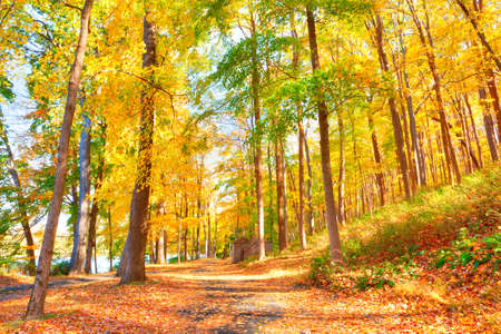 newfound gap: Trail in Delaware Water Gap  in Autumn with colorful foliage. Stock Photo