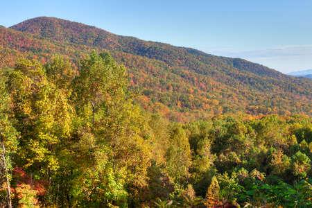 newfound gap: Great Smoky Mountains in autumn. Stock Photo