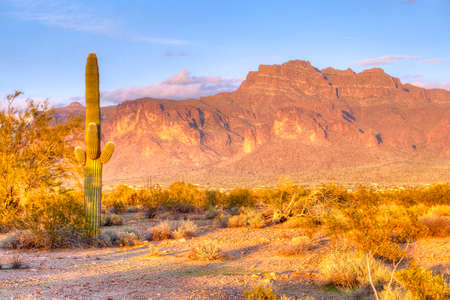 sonoran: Superstition Mountain. Stock Photo