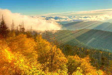 great smoky mountains: Clouds rolling on top of the Smokies, at sunrise.