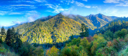 great smoky mountains national park: Clouds lingering on top of the Smokies. Stock Photo