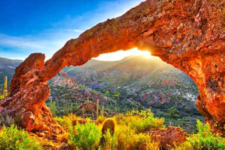 cholla: Elephant Arch in Sonoran Desert at sunrise. Stock Photo