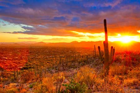 Sunset over suburb of Tucson.