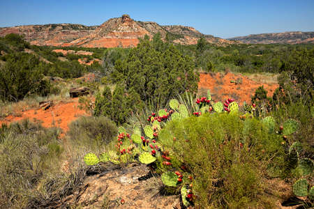 Palo Duro Canyon State Park in Texas.