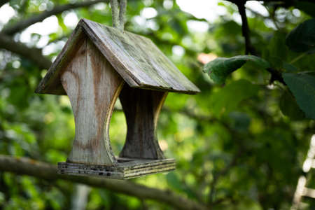 Bird feeders. tree house for the birds, cheerful apartment Banque d'images