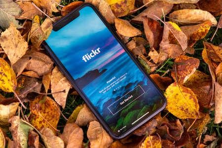 Tallinn / Estonia - September 28, 2020: Black iphone with logo of Social media Flickr on the screen. Fall leaves background. Can be used as illustrative for marketing or business concept