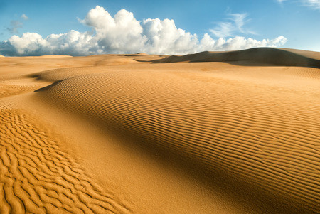 Yellow soft sand dunes in desert with sand patterns and lines and shadows
