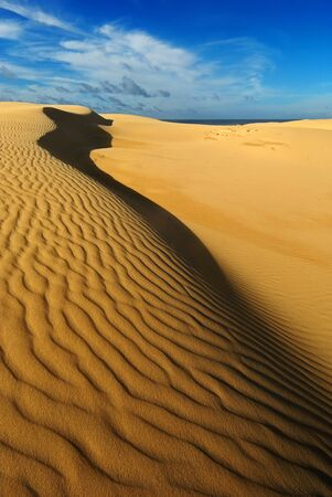 a mirage: Yellow soft sand dunes in desert with sand patterns and lines and shadows with distant water or mirage