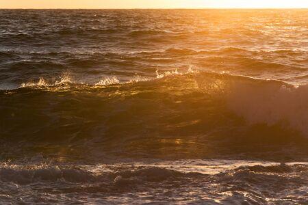 olas de mar: Grandes olas del mar durante el amanecer transparentes con luz de fondo y el color verde