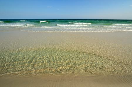 밝은 노란 모래와 맑은 녹색과 시안 색 물이있는 열대 낙원 해변