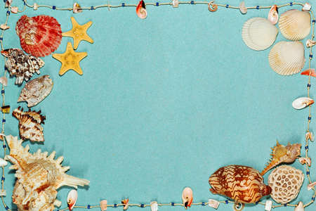 Nautical concept background with colorful sea shells and star fish with aquamarine textured backdrop