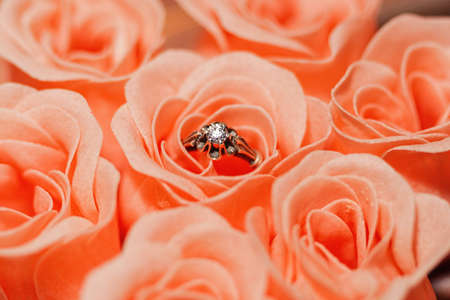 Silver ring with faceted jewel in middle of pink rose blossom surrounded by other blossoms as love symbol. Romantic engagement, wedding or marriage present concept. Close-up capture, selective focus. Reklamní fotografie
