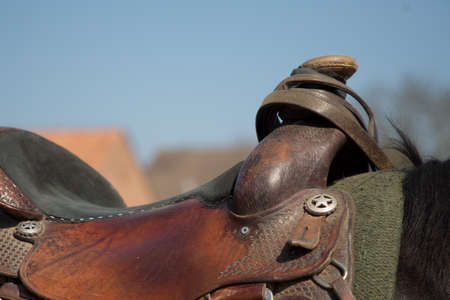 close up of saddle with horn