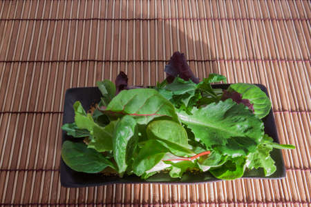 the greens: Salad Greens and Spinach