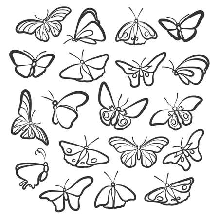 nineteen: Nineteen icons butterflies. The different angles.