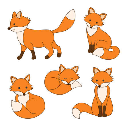Set of cute cartoon foxes in modern simple flat style isolated vector illustration.