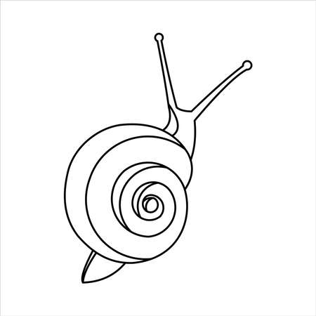 Snail For Coloring Book for kids and adults, Top view. Symbol of Slowness. Modern flat Vector illustration on white background.