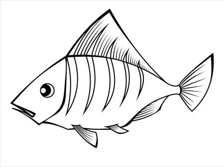 A Fish. Tropical, Aquarium Fish. For Childrens Coloring Books. Vector Image on white background.