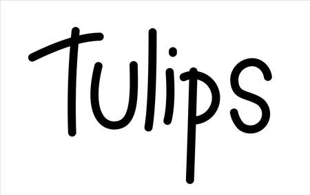 Tulips. Handwritten Word Lettering Vector Image Isolated on white background.