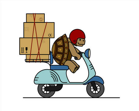 turtle is riding a scooter. Slow delivery. A cute turtle in a helmet carries boxes on a moped. Signs on cardboard boxes. Symbol of slowness. Modern flat vector illustration isolated on white background.