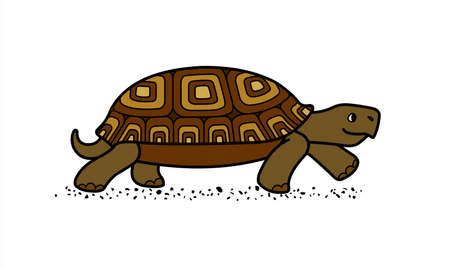 vector cute land tortoise with patterned shell, side view; isolated on a white background; symbol of slowness; walking turtle Illusztráció