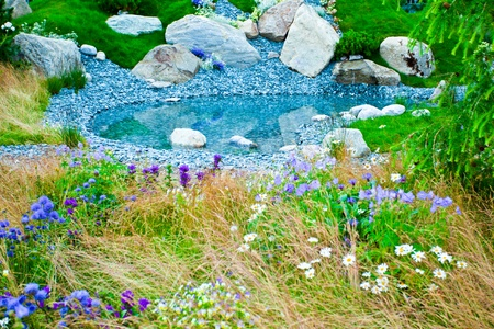 cornflower: Tranquil garden with a pond