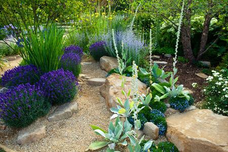 garden lawn: Tranquil garden landscape