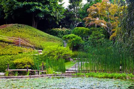 tranquil: Tranquil garden landscape