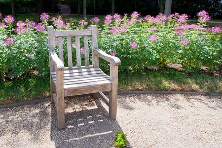 jardines con flores: paisaje tranquilo jardín con un banco Foto de archivo