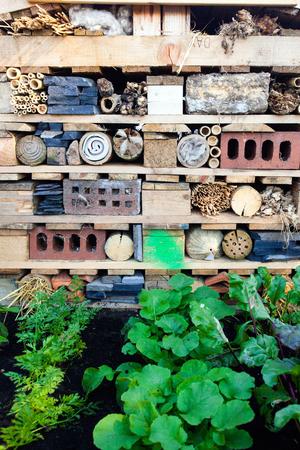 Bugs hotel in a garden