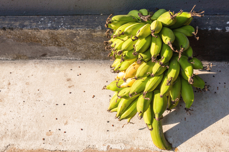 Bunch of ripe and ripening bananas on stone backgroud