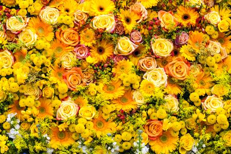 Beautiful yellow roses herberas and chrysanthemum background Standard-Bild